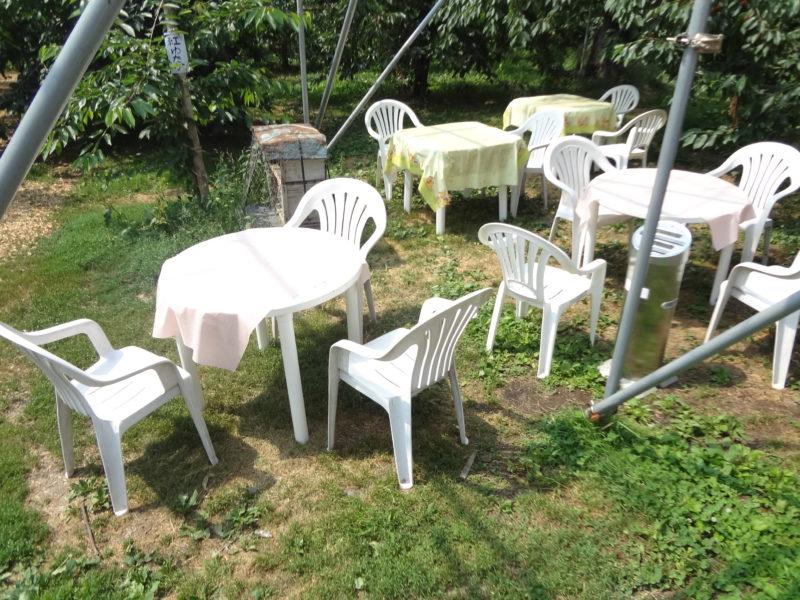 果樹園ビニールハウス下のテーブルと椅子
