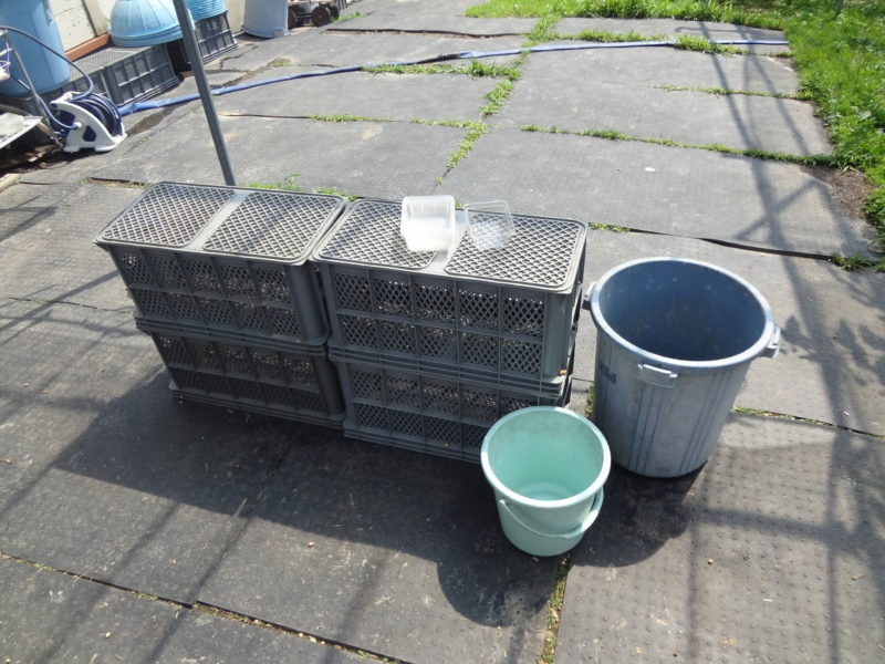 ヘタなどを捨てるゴミ箱