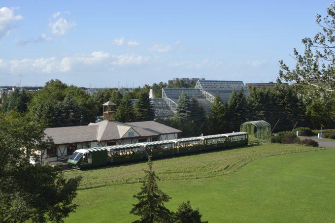 サイロ展望台から眺めるリリートレインと駅舎