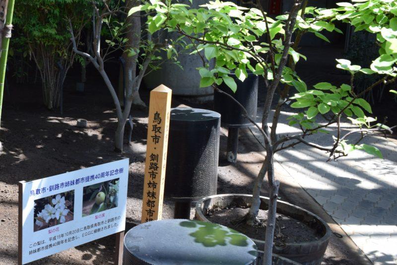 鳥取市・釧路市姉妹都市提携40周年記念樹の梨の花と梨の実