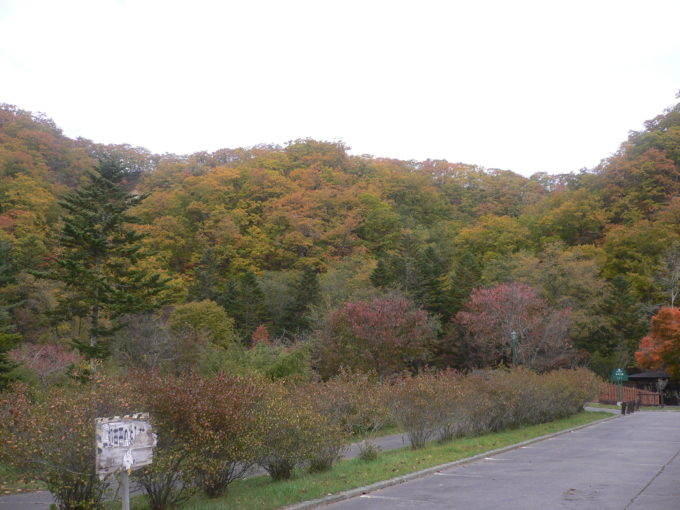 紅葉の色染まる本別公園