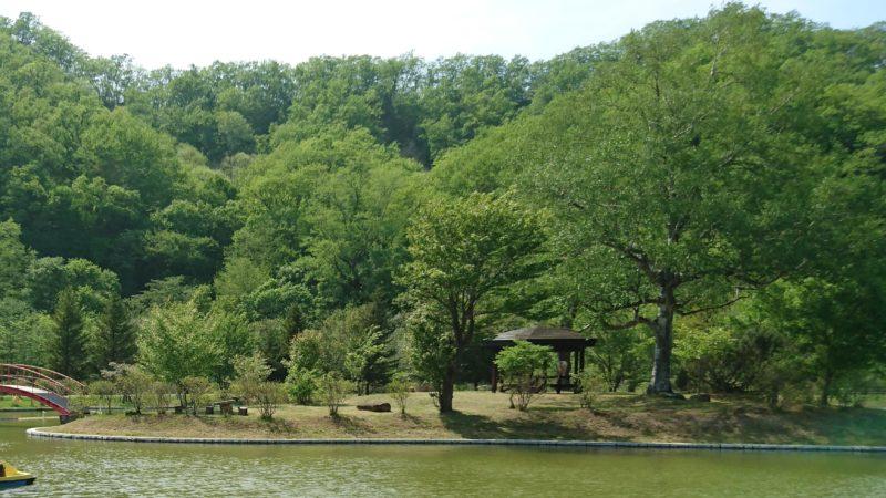 かぶと池の中央には小さな島