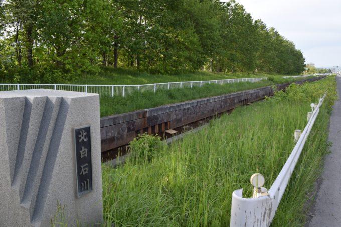 川下公園の西側を流れる北白石川