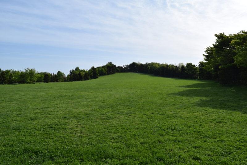 川下公園ふるさとの丘