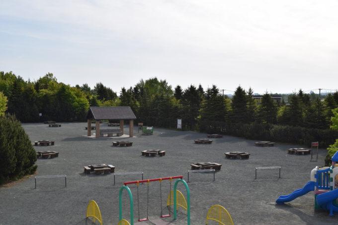 遊具広場の大型コンビネーションから見るピクニック広場