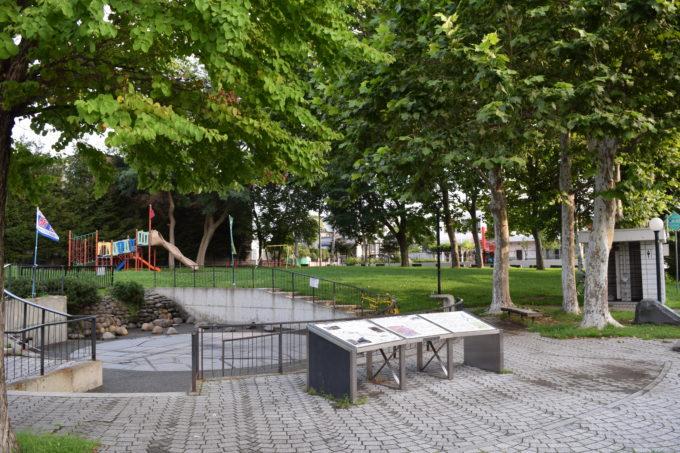 大友公園リンゴの木やイタヤカエデ