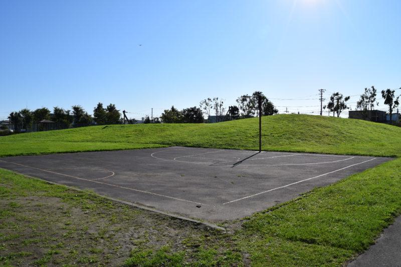 愛国西公園にあるバスケットコート
