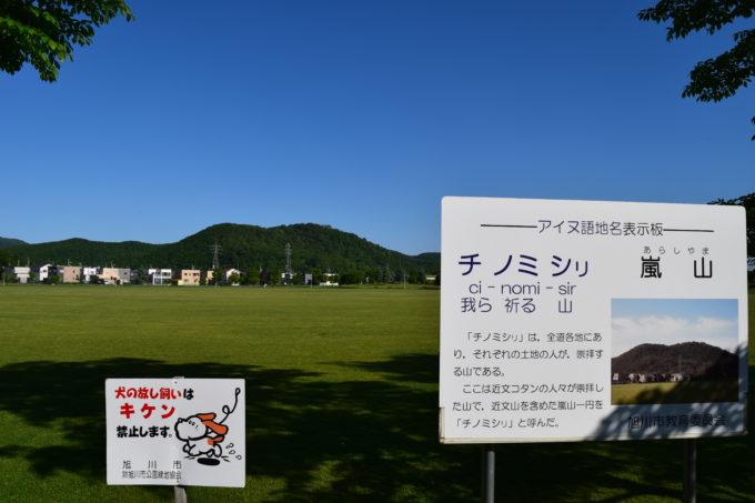 忠和公園多目的広場からの嵐山