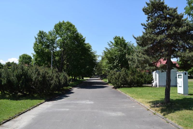 舗装された遊歩道