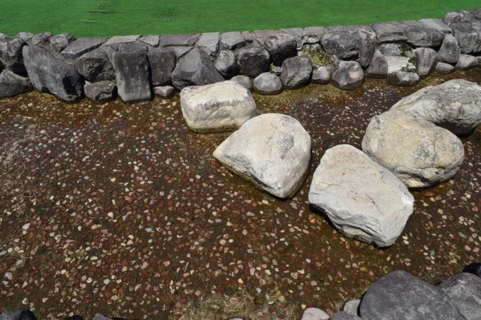 新富公園徒歩池