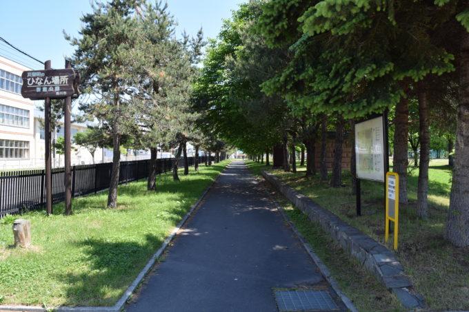 新富公園内の緑あふれる遊歩道