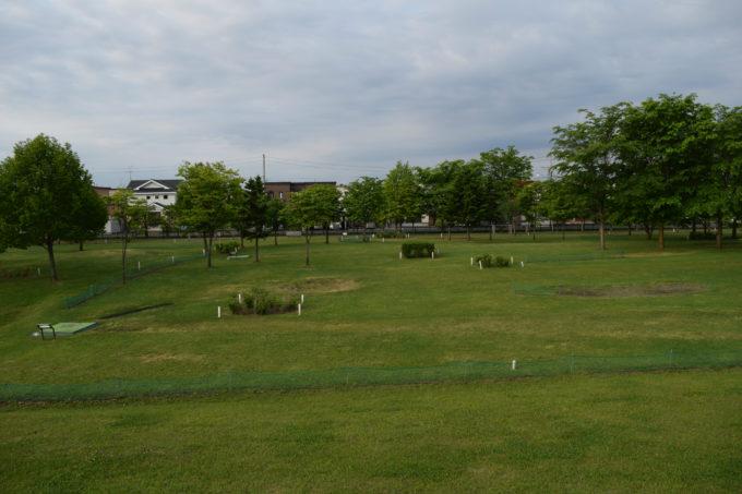 東豊公園のパークゴルフ場