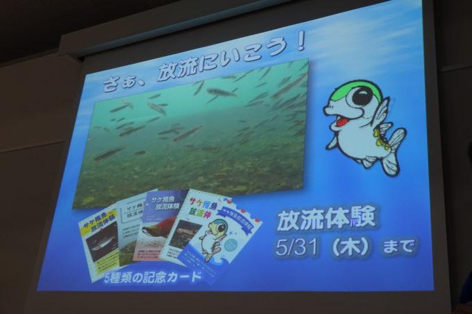 サケ稚魚放流記念カードコンプリート