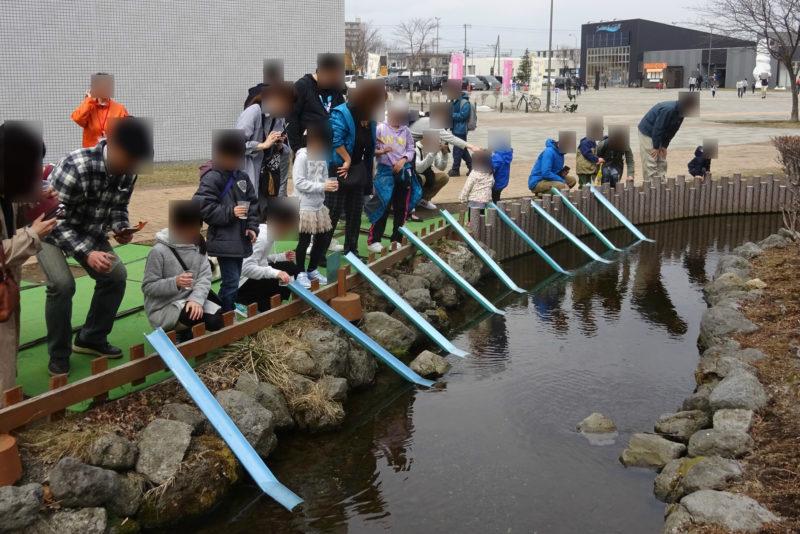 千歳水族館のサケ稚魚放流体験