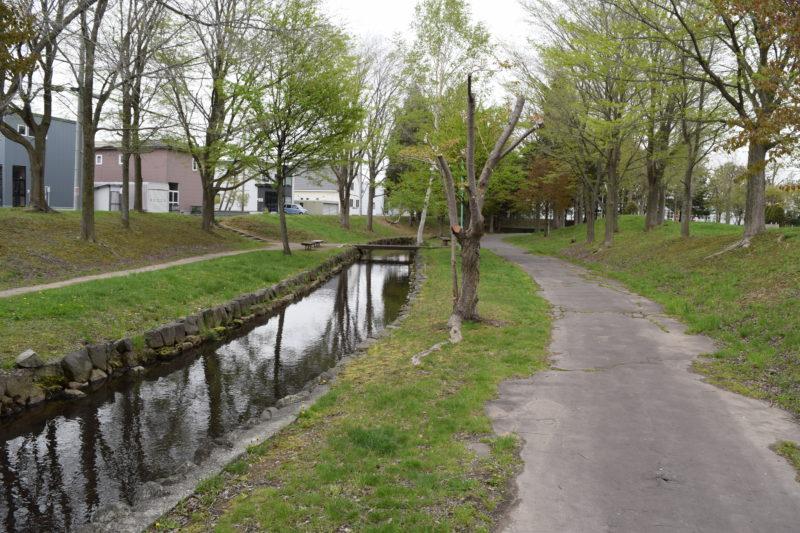 散策路沿いにある園内を結ぶ水路