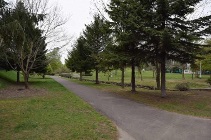 恵み野中央公園の散策路