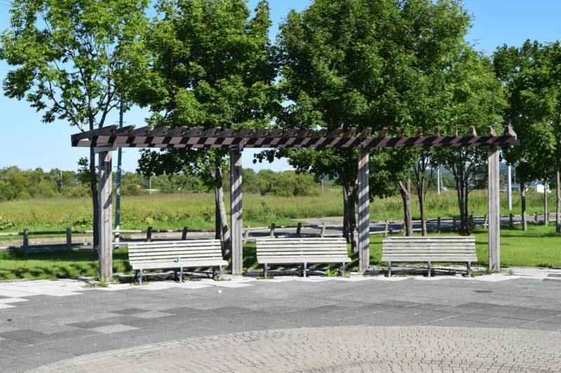 噴水広場付近のパーゴラとベンチ