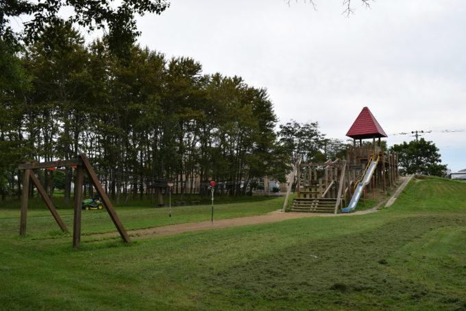 ターザンロープと長い滑り台がある木製のアスレチック遊具