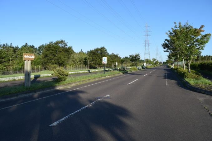 園内の車両道路