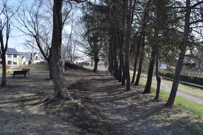啓西公園の園路