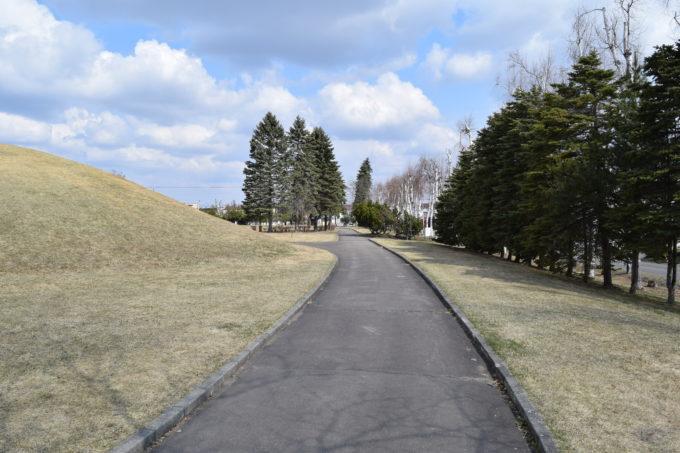 白樺公園遊歩道