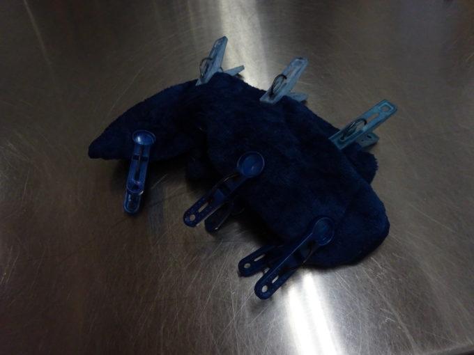タオルを藍液から取り出し空気酸化させます。