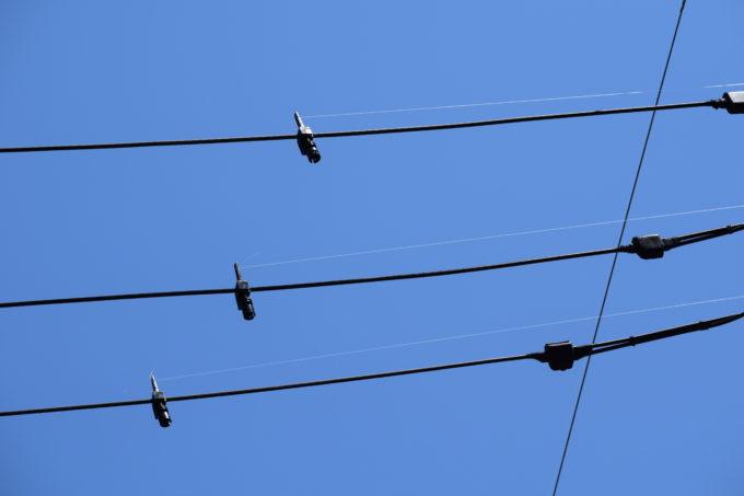 鳥害対策工事