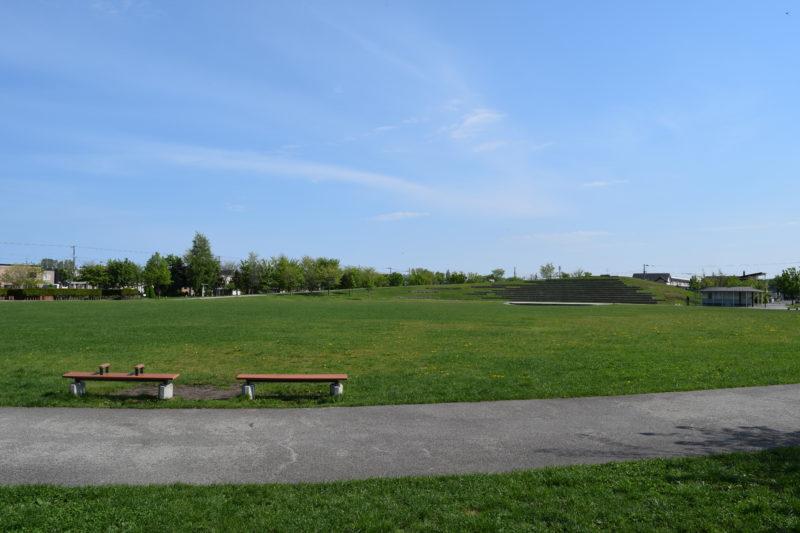 石狩ふれあいの杜公園中央にある芝生広場