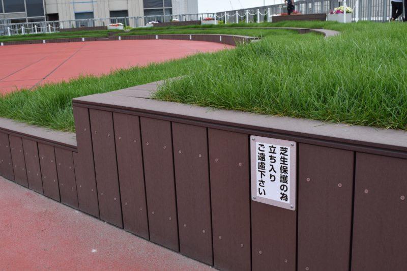 芝生エリア