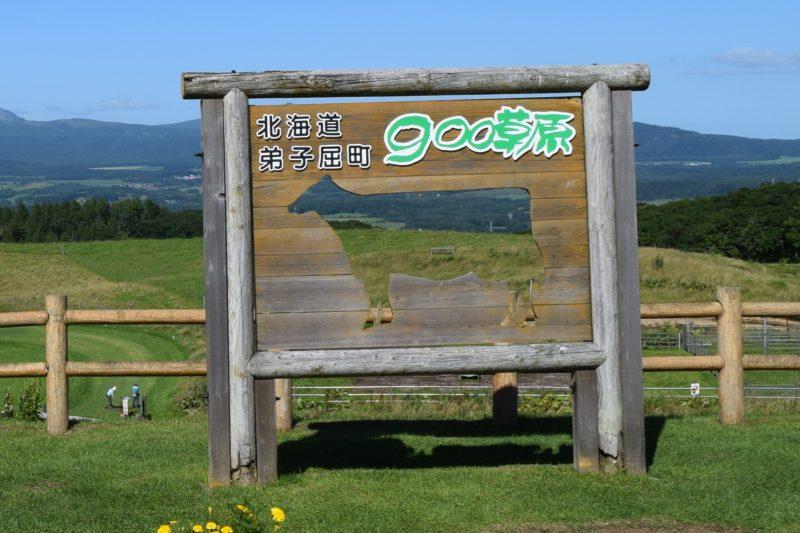 900草原「牛の顔ハメ看板」