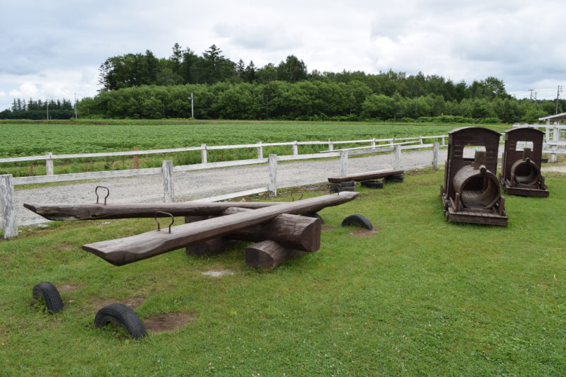 遊具広場にある木製のシーソーと汽車