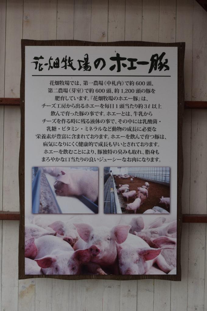 花畑牧場のホエー豚