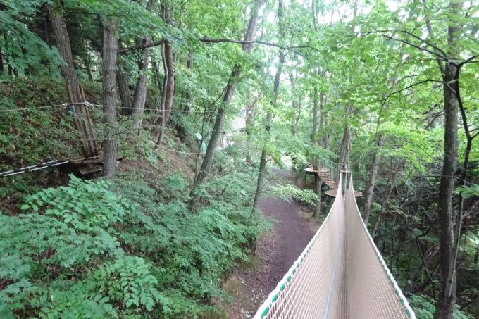 緑が生い茂る森の中でのアスレチック体験は楽しい