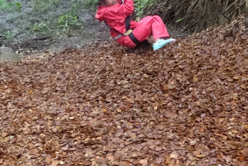 最後は木の葉の絨毯へダイブ