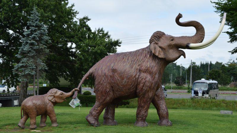 北海道幕別町の公園・緑地一覧