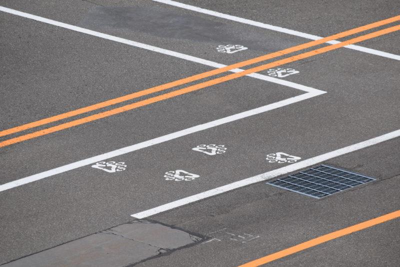 丘珠空港駐機場にある歩道の足跡