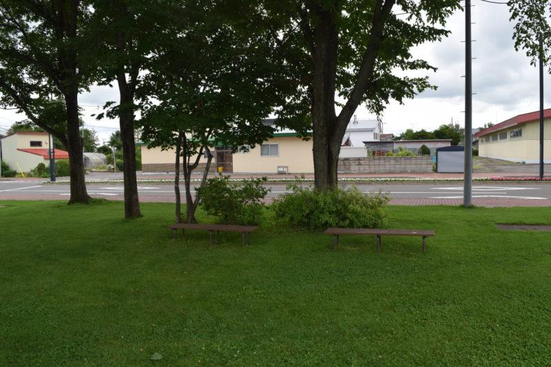 遊具広場の木の下にはベンチ