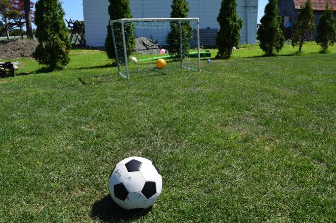 サッカーボールとミニゴール