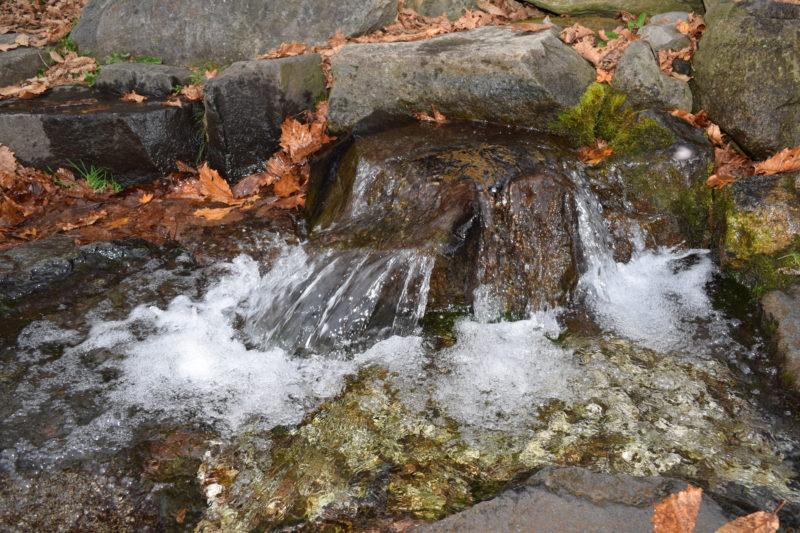 白老虎杖浜親水公園カムイワッカの水