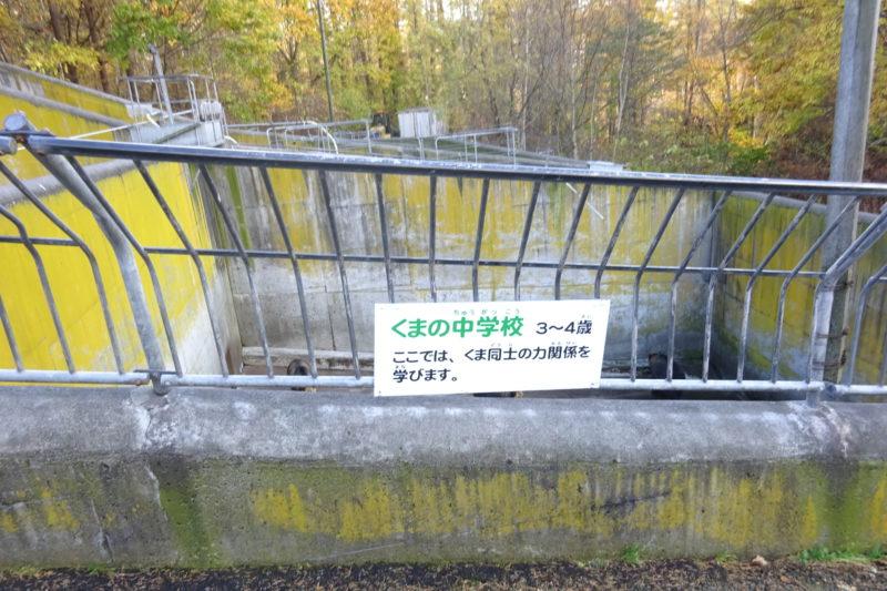 昭和新山熊牧場くまの中学校