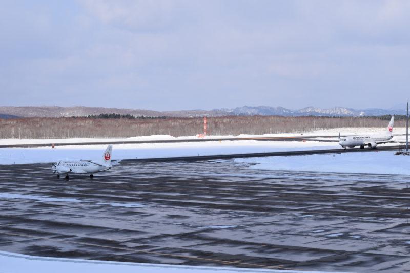 JAL機「JA03HC」とJAL機「JA336J」。