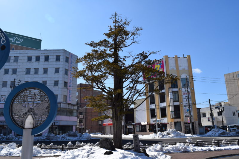釧路駅風雪の樹