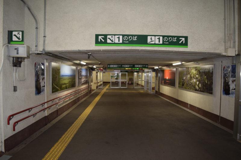エスカレーターを降り地下道を進みます