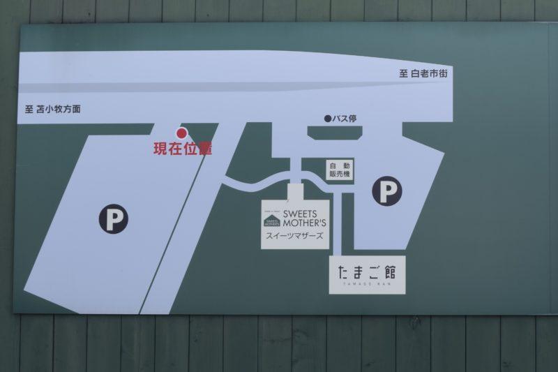 白老たまごの里マザーズ白老本店の敷地内地図