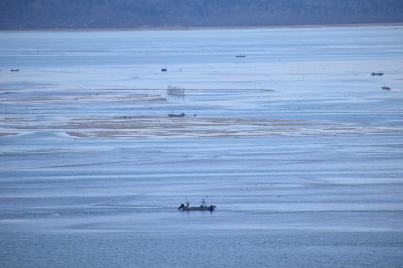 厚岸湖の牡蠣漁を行う漁船
