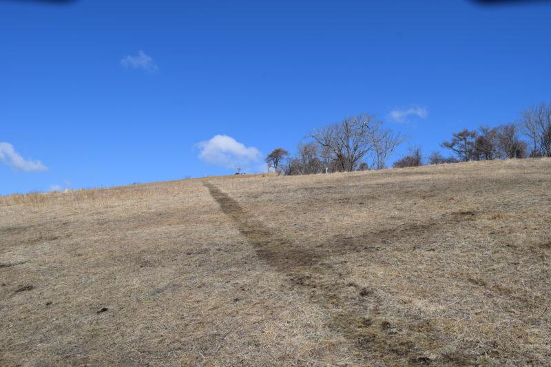 牡蠣の見える丘