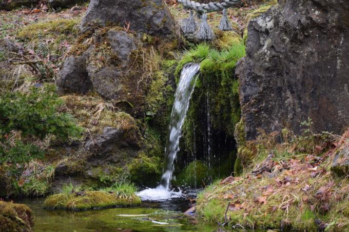 庭園の池に流れ込む滝の水
