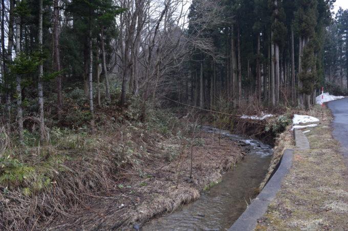 ヤクモ飲料沿いにある小川の上流側