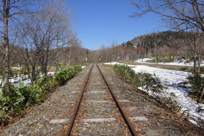 日本国有鉄道(国鉄)美幸線の廃線跡を使用しているトロッコ王国