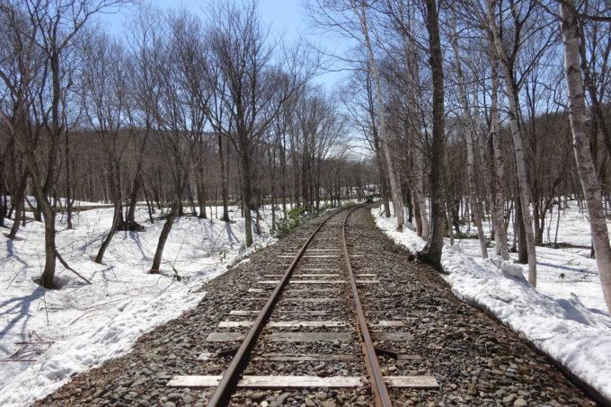 森林の中を抜けるトロッコ列車